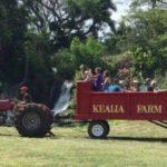 Kealia Farm Market and Tour